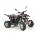 Quad sportowy Access Motor SP250S